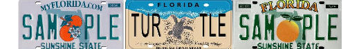 Florida License Plate Lookup Fl Tag Number Search Dmv And Vehicle Records